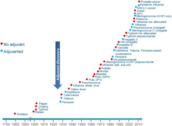 ADJUVANT_graphique.jpg